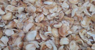 خرید و فروش سیر خشک