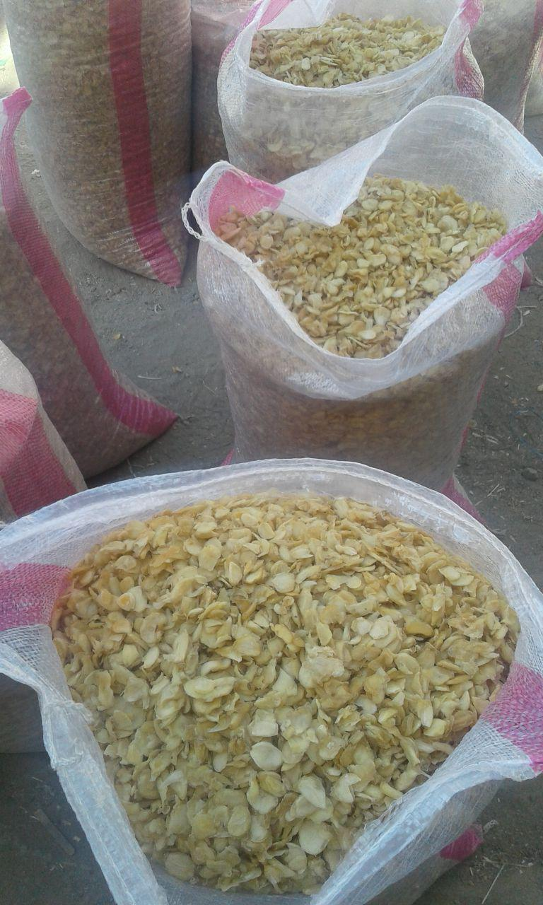 قیمت سیر خشک صادراتی