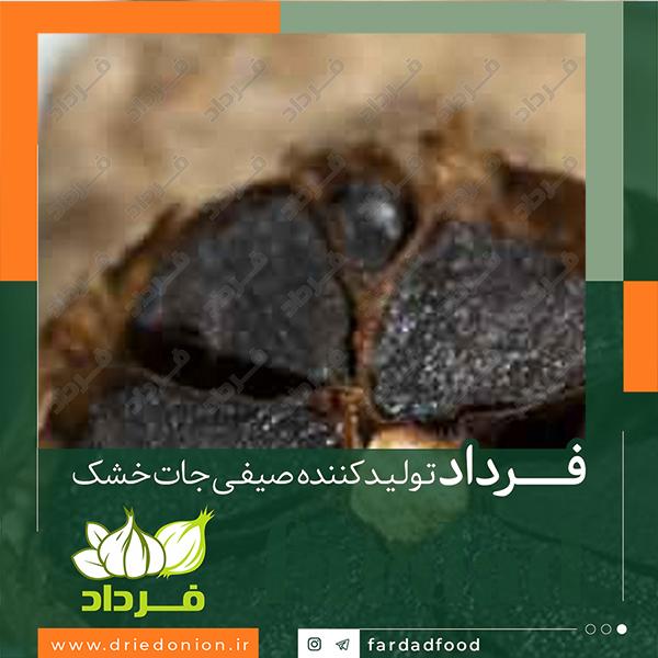 خرید سیر سیاه از فروشگاه های مجازی شرکت صنایع غذایی فرداد
